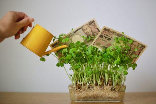 株式投資でお金を育てる